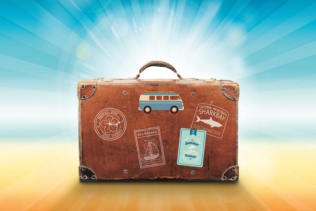 荷物, 休日, 旅行, 夏, 海, 太陽, 回復, ステッカー, ハワイ, 帆, サーフィン, Vwバス