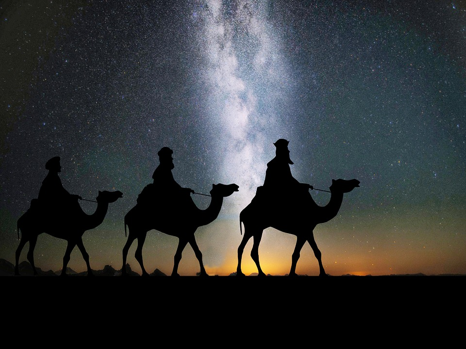 Camels, Desert, Travel, Sand, Silhouette, Night, Stars