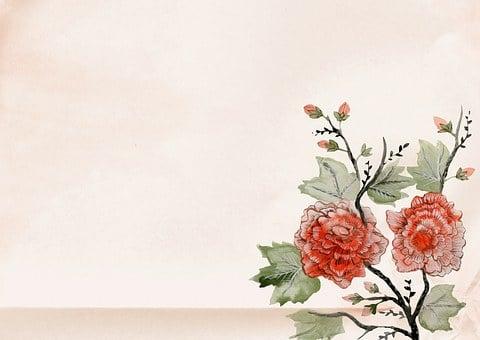 Vintage Background Japan Flower Rose