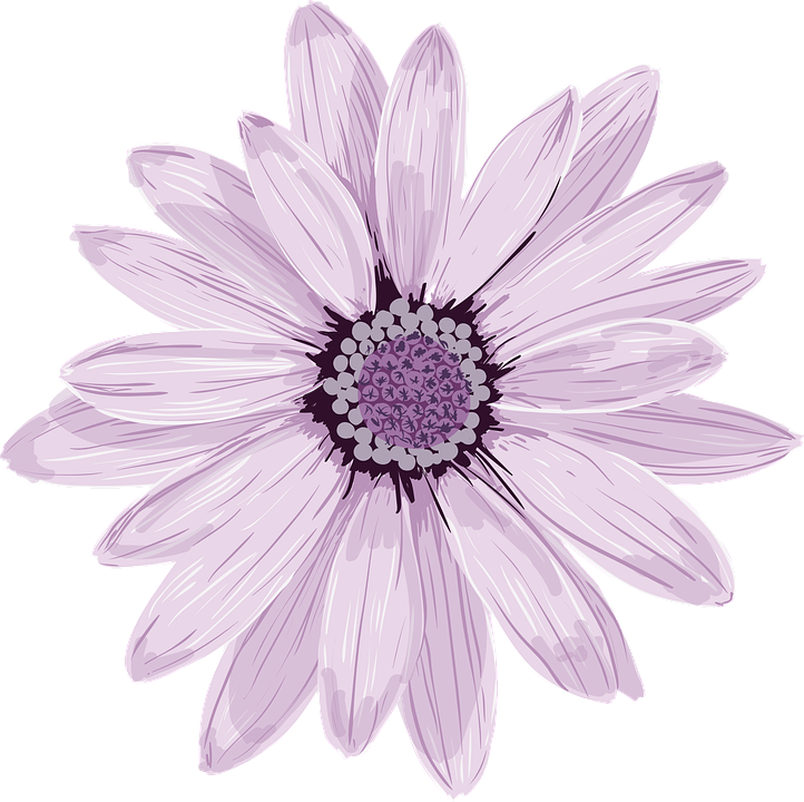 Purple Flower Clipart No Background: Flower Spring Fresh · Free Vector Graphic On Pixabay
