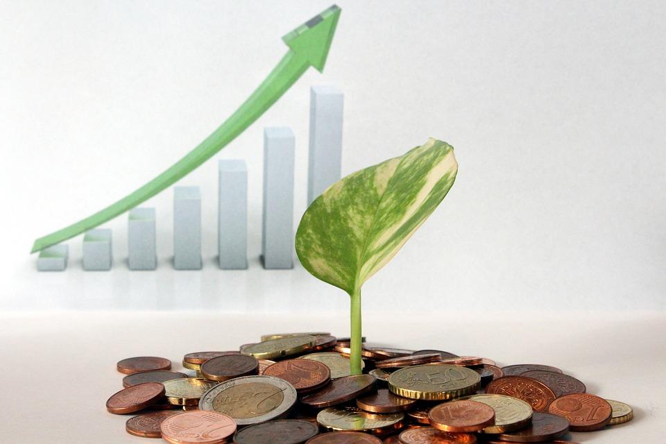 Рентабельность чистых активов