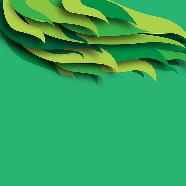 Green Background Feather Abstract Free Image On Pixabay