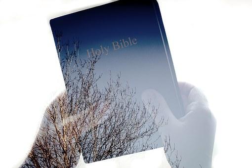 Bibel, Lesung, Buch, Religion, Studie