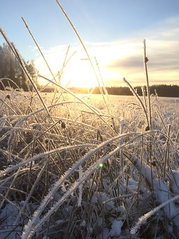 Frost, Sunset, Field, Sunrise, Winter