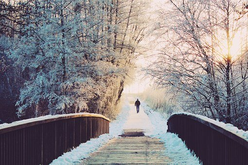 Man, Bridge, Lonely, Sun, Walk, Wintry