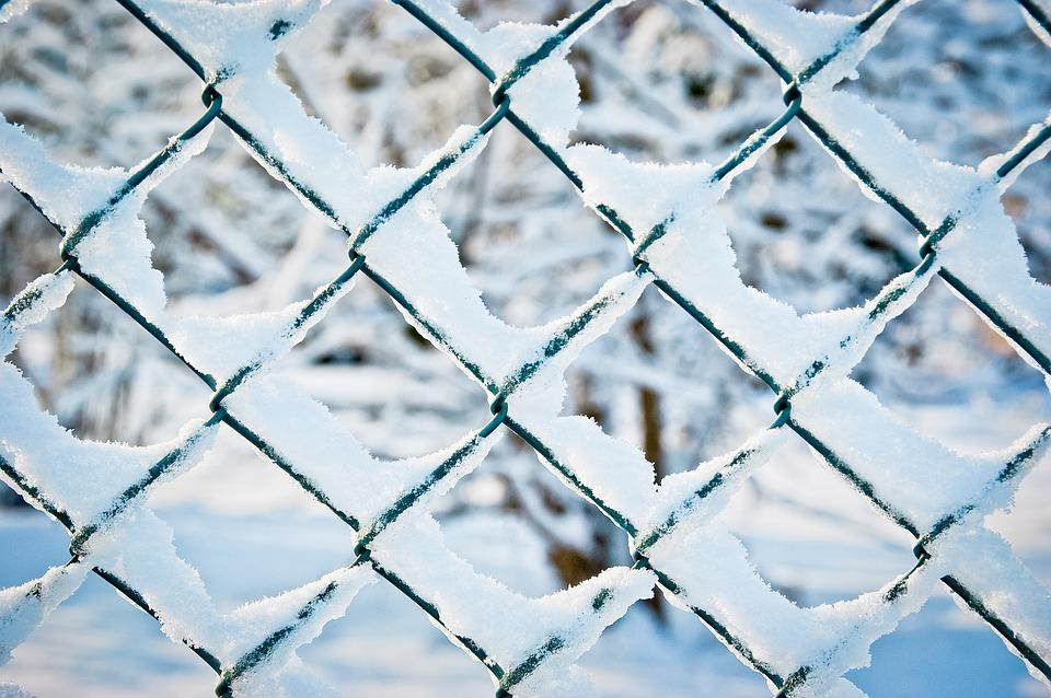 100+ Free Wire Mesh Fence & Fence Images - Pixabay