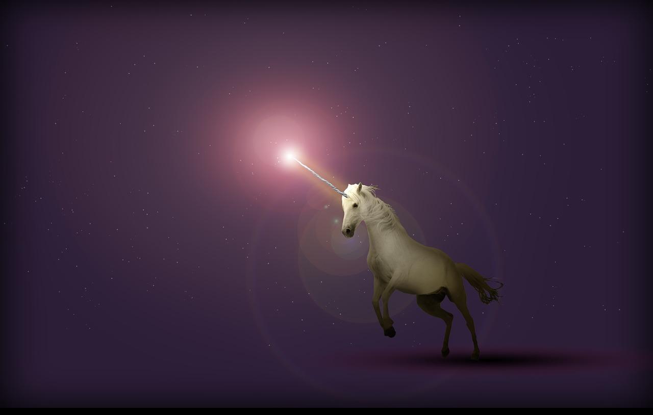 Purple Unicorn, courtesy of Wild0ne, Pixabay.