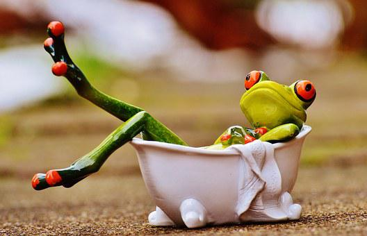 Swimming Frog Images · Pixabay · Download Free Pictures