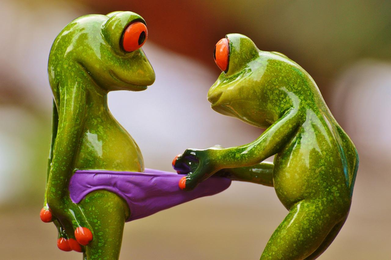 Картинки с лягушками приколы, статусы картинках