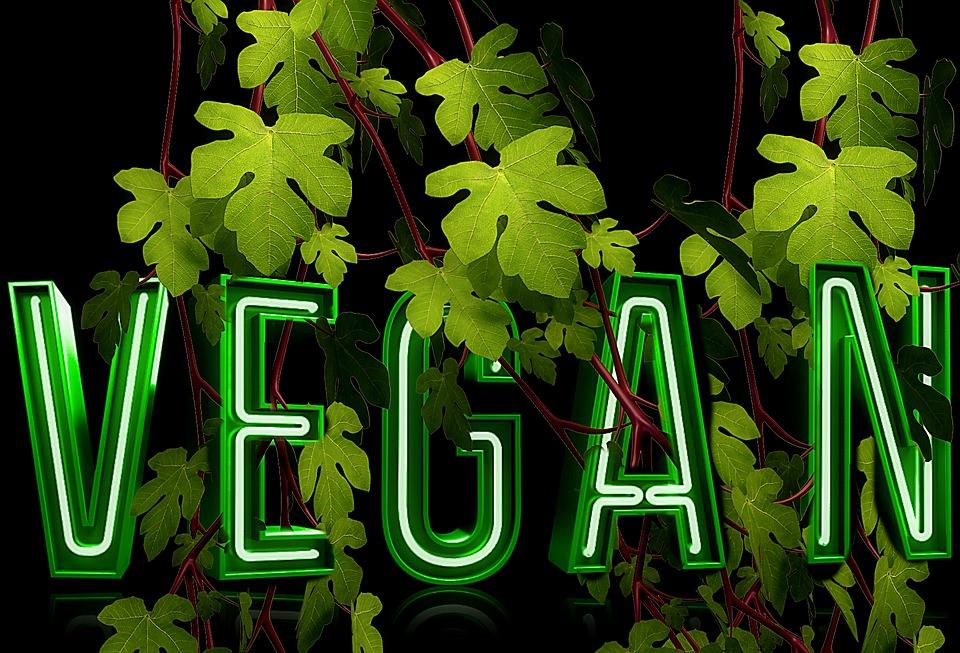 Bildergebnis für pixabay vegan