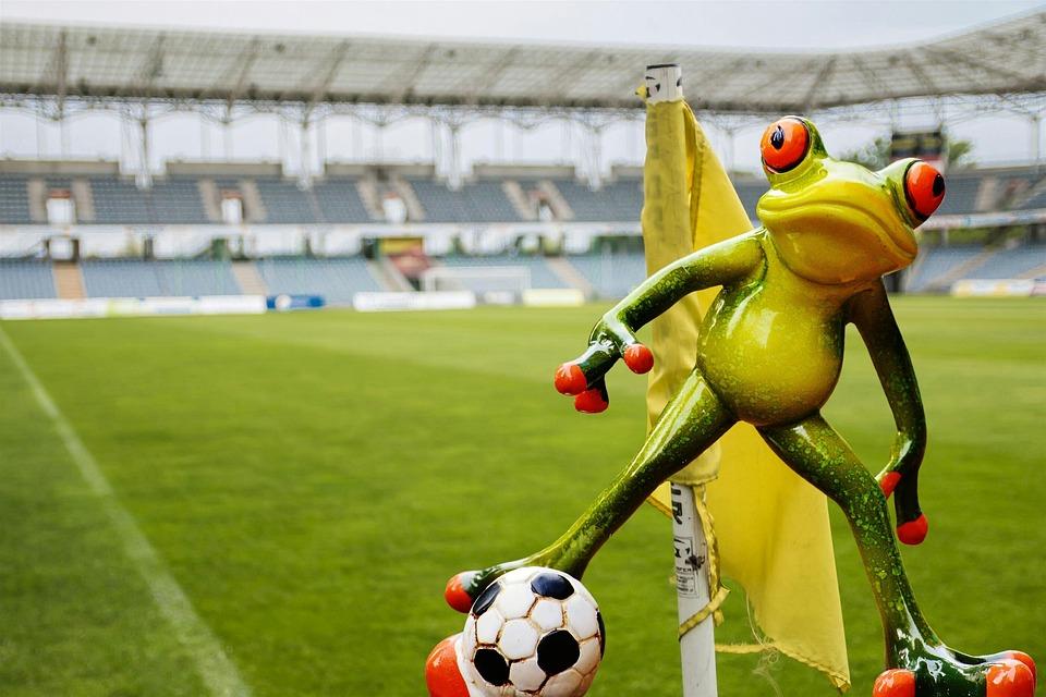 Frosch Fussball Lustig Kostenloses Foto Auf Pixabay