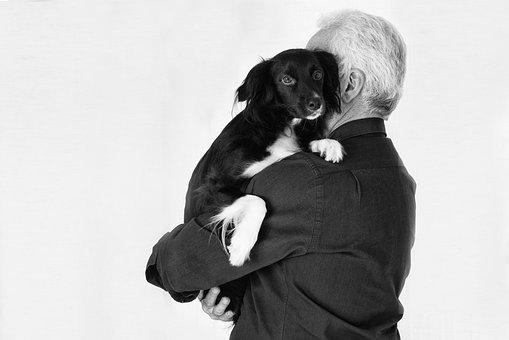 Pet, Animals, Dog, Friend, Black, Man