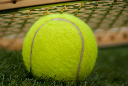 Tennis Ball, Racket, Tennis, Sport