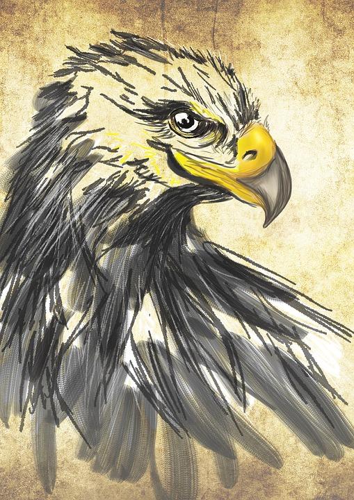 kostenlose illustration  zeichnung  kunst  adler  tiere - kostenloses bild auf pixabay
