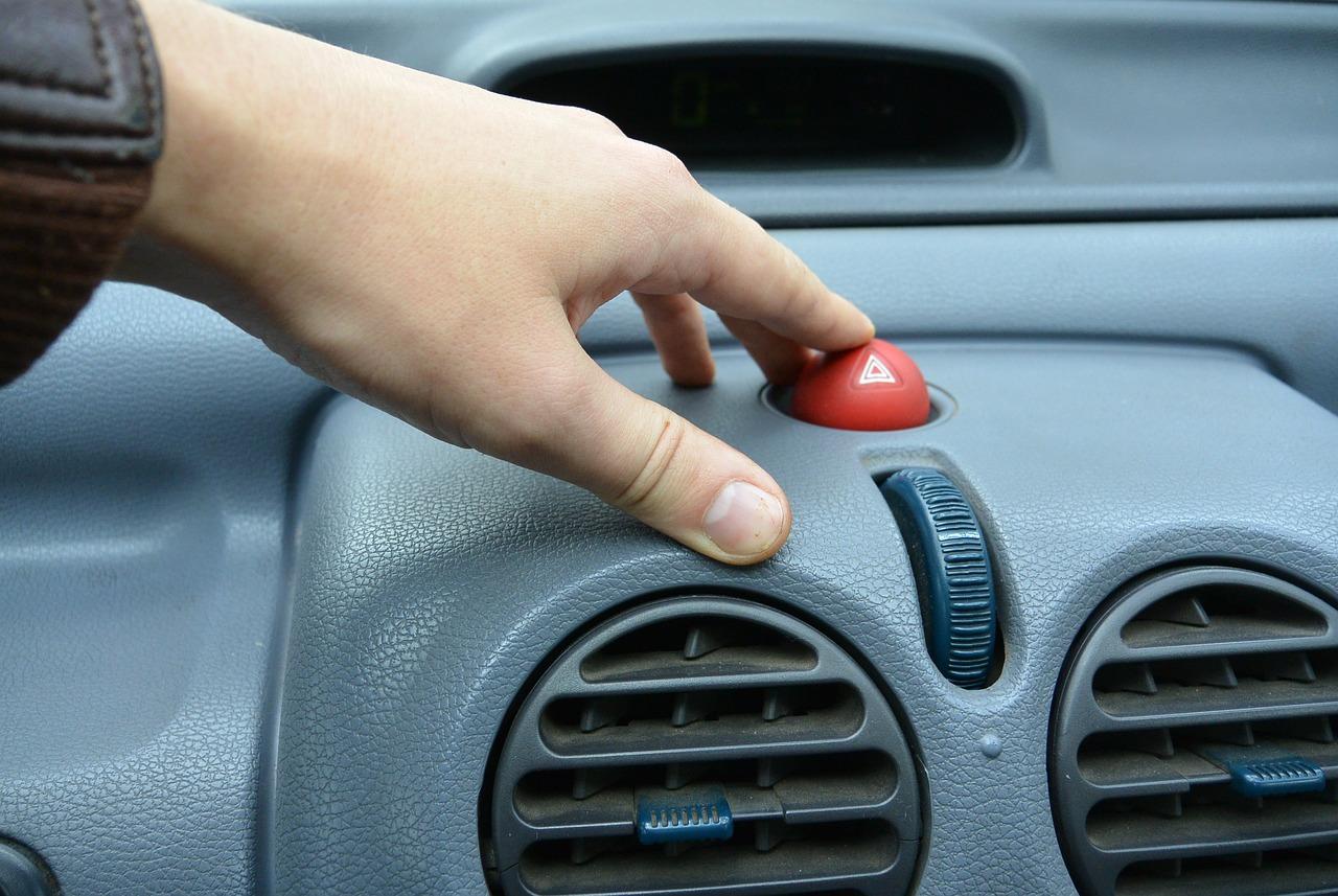 Car alarm button
