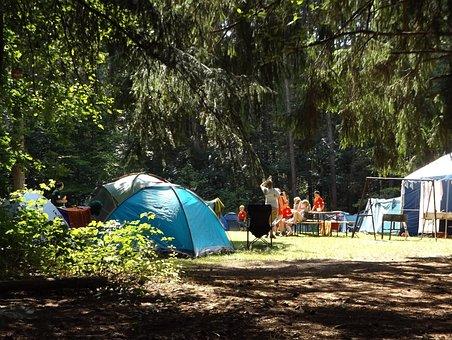 Camp, Forest, Été, Jours Fériés, Groupe