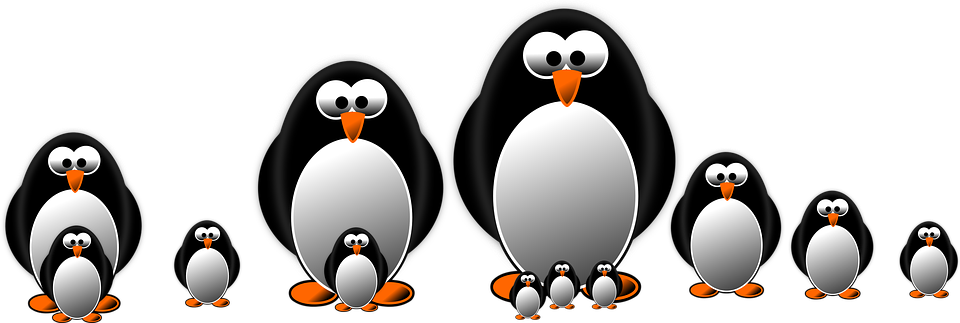 Penguins Ring