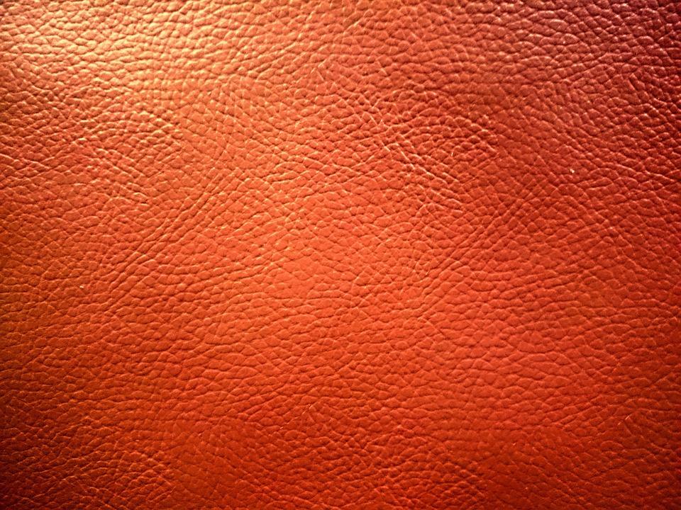 Texture Skin Photo Free On Pixabay