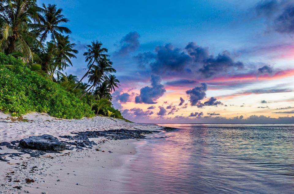 tropical beach free photo on pixabay