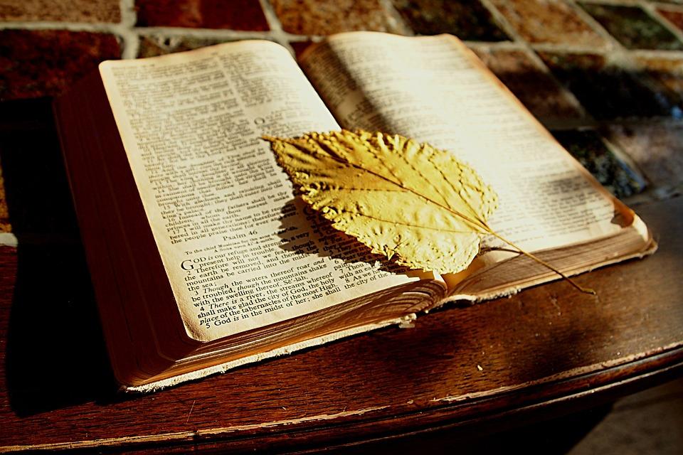 Bible, Read, Book, Bookmark, Faith, Christian, Table
