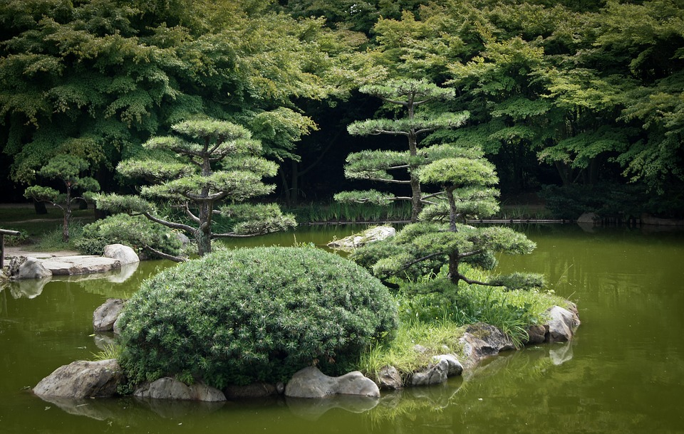 Free Photo Japanese Garden Lake Water Free Image On Pixabay 1167937