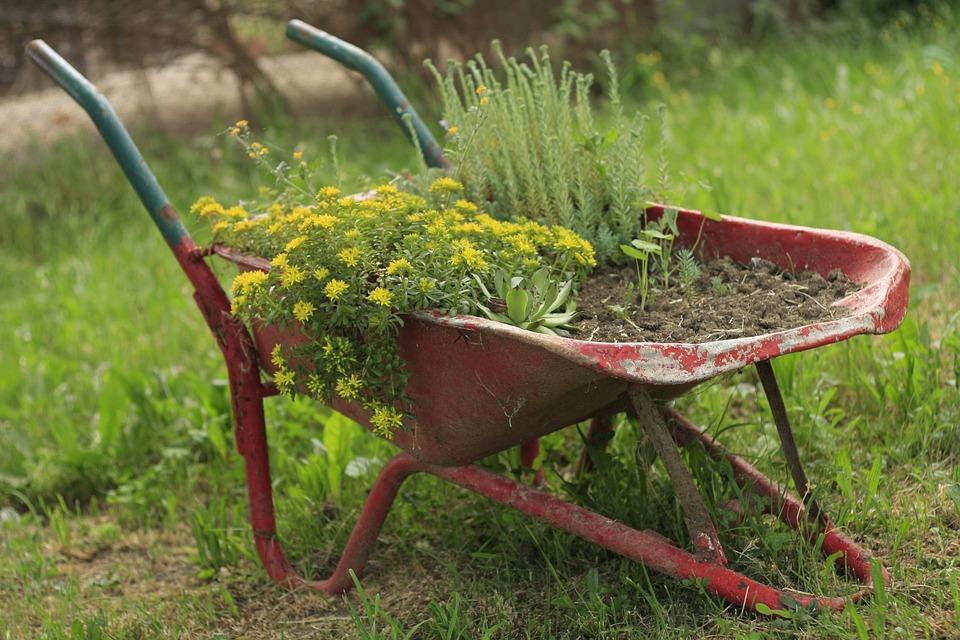 Muito Carrinho De Mão Flor Jardim · Foto gratuita no Pixabay IY69