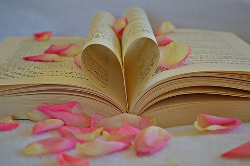 Book Heart The Heart Of Romantic Romance V
