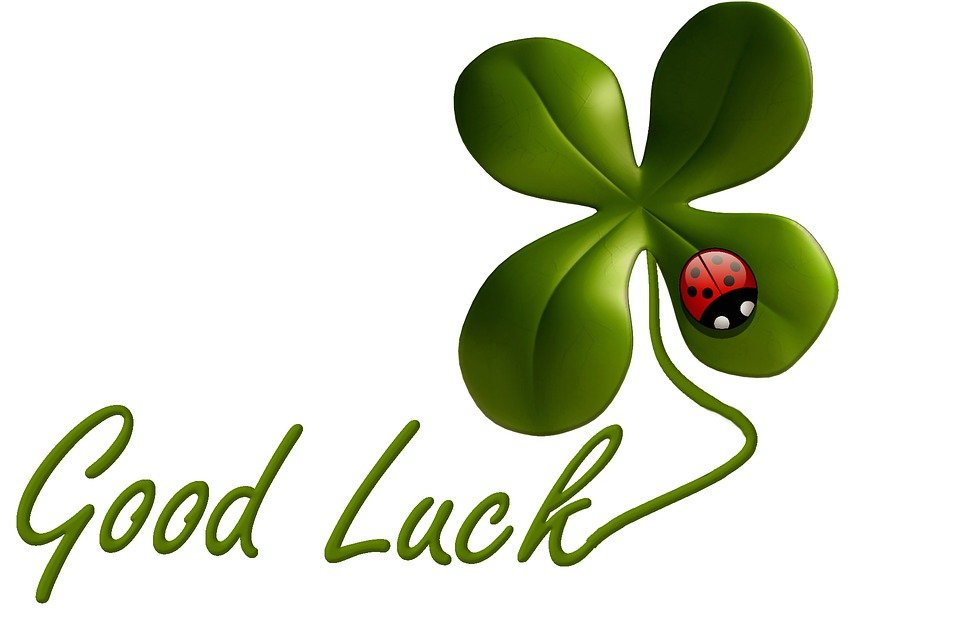 luck lucky clover ladybug  u00b7 free image on pixabay grassland climate biome grassland climate issues