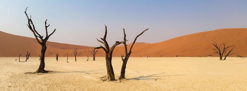 Afryka, Namibia, Krajobraz, Pustynia Namib, Pustynia