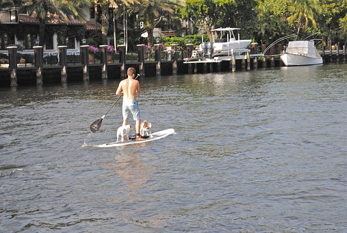 Paddle Board, New River, Fort Lauderdale