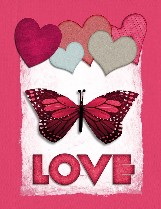 Valentine Butterfly Love Heart Abstract Pink