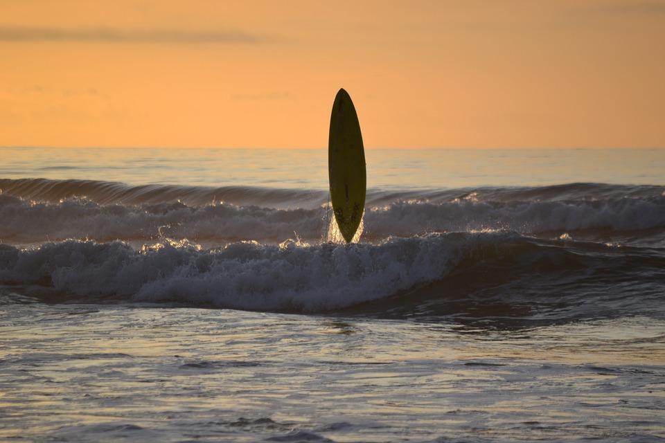 surfing sunset surf board free photo on pixabay
