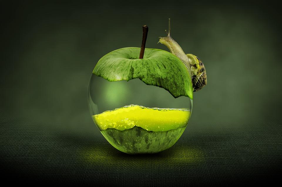 apple green fruit free image on pixabay