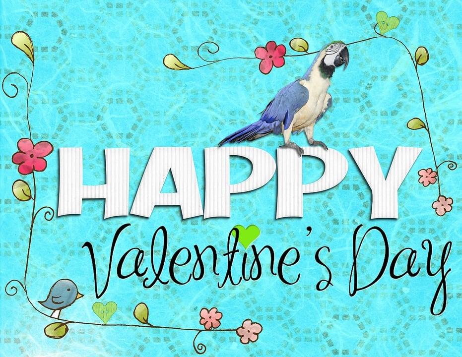 Valentine, Tag, Frohen Valentinstag, Blau, Vogel