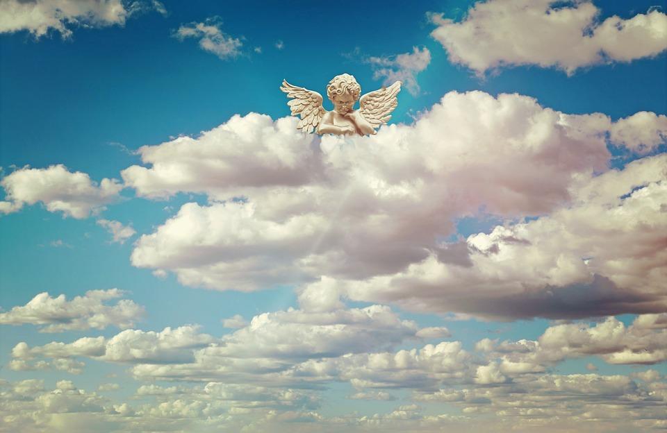 天使の画像 p1_3