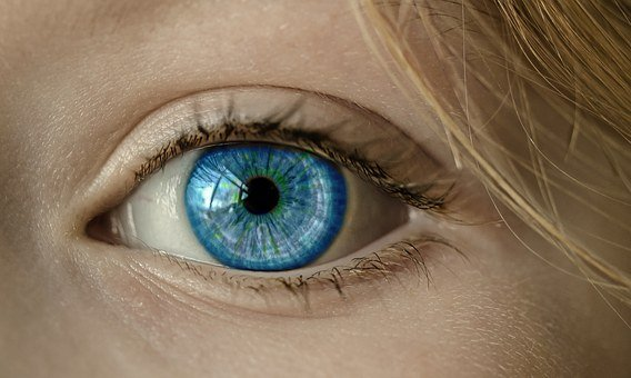 Eye, Blue Eye, Iris, Pupil, Face