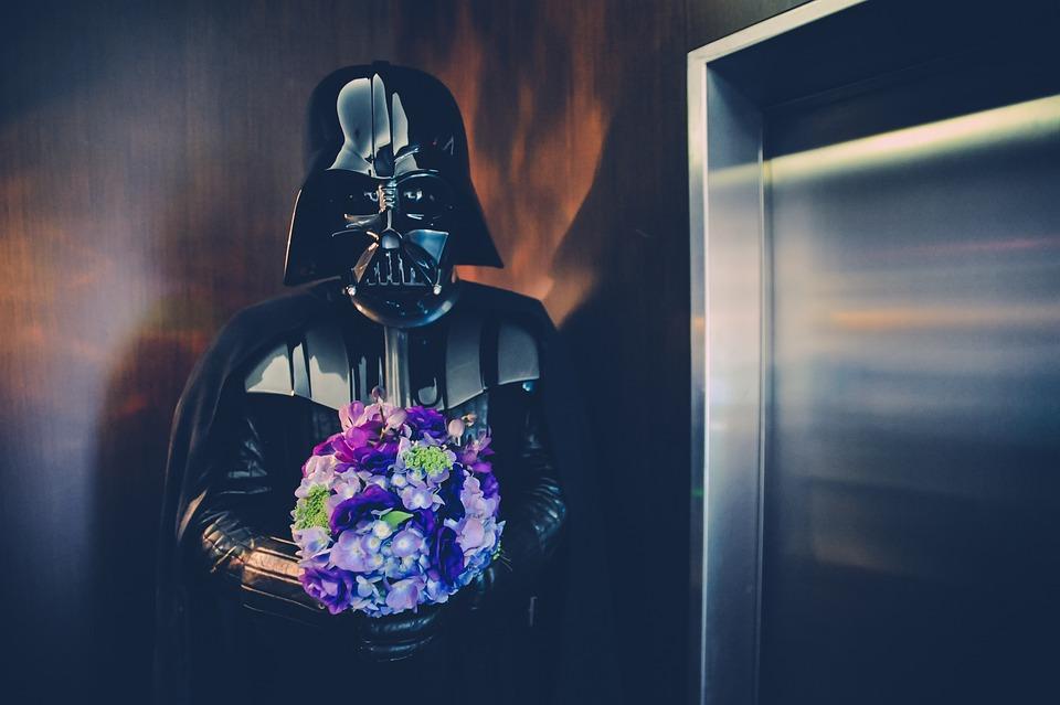 スター ・ ウォーズ, 花, 兵士, 暗い, ダースベーダー, 結婚式, リフト, エレベーター, 青結婚