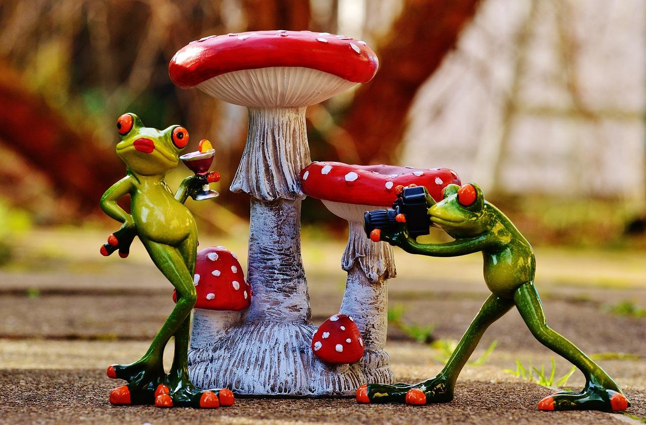 Прикольные картинки лягушата