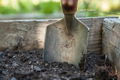 庭, スペード, 土, ガーデニング, 仕事, 植物, 春, ツール