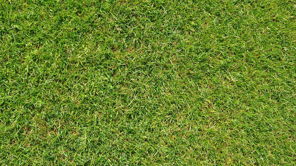 green grass football field green striped grass green football field background grass green football free photo on pixabay