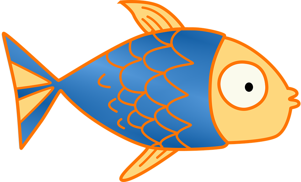 fish kids clip art free image on pixabay rh pixabay com fish clip art vector fish clipart transparent