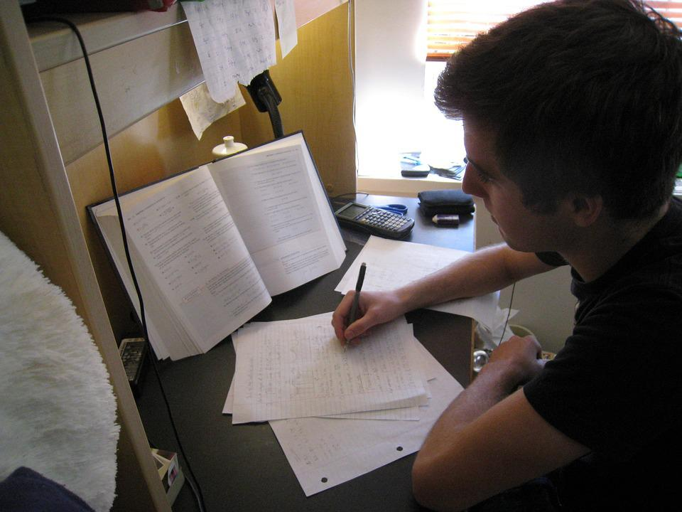 学生, 濃縮, 準備, 試験, リビジョン, オフィス, 家事, 仕事, 大学, 研究, 人, 若者, 少年