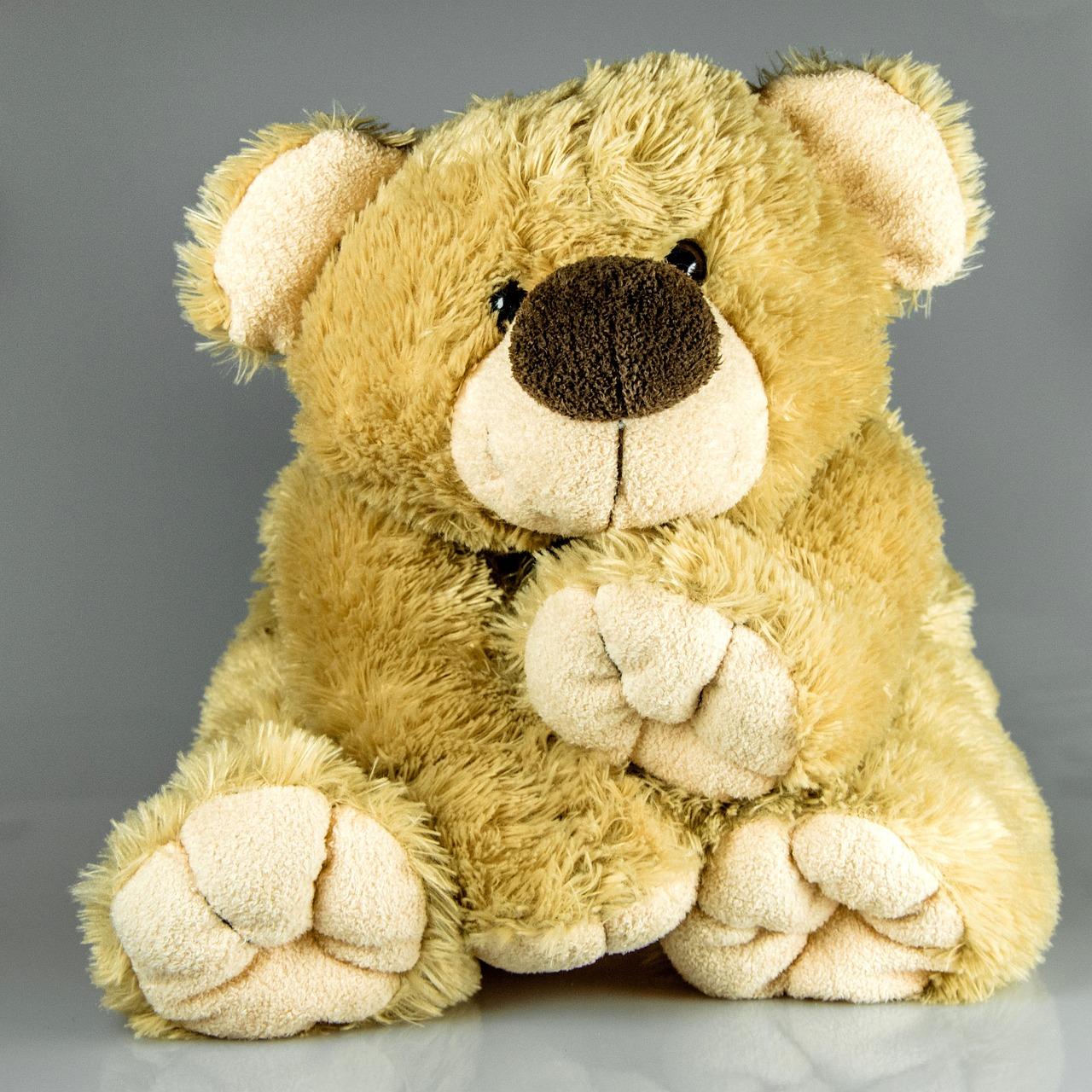 Фото с медвежонком игрушкой