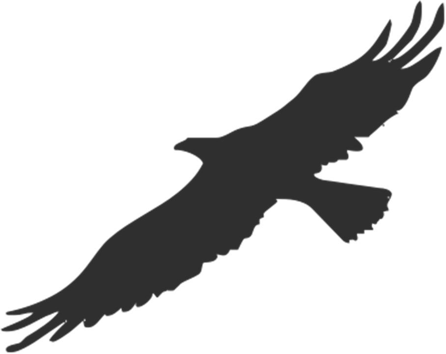 quail silhouette clip art - photo #36