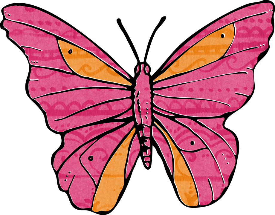 Pink vintage butterfly background - photo#54