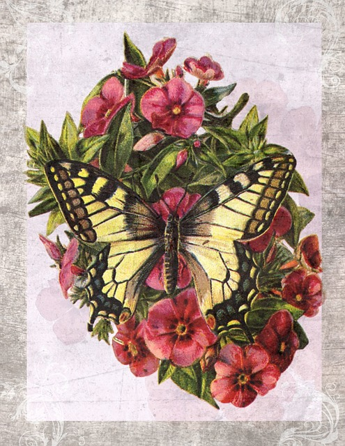 Vintage Butterfly Flower 183 Free Image On Pixabay