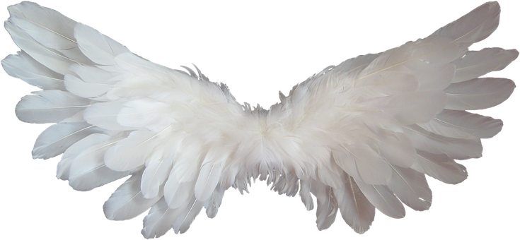 Angel, Wings - Free pictures on Pixabay