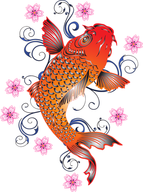 Free vector graphic koi carp fish flower cherry for Koi japones