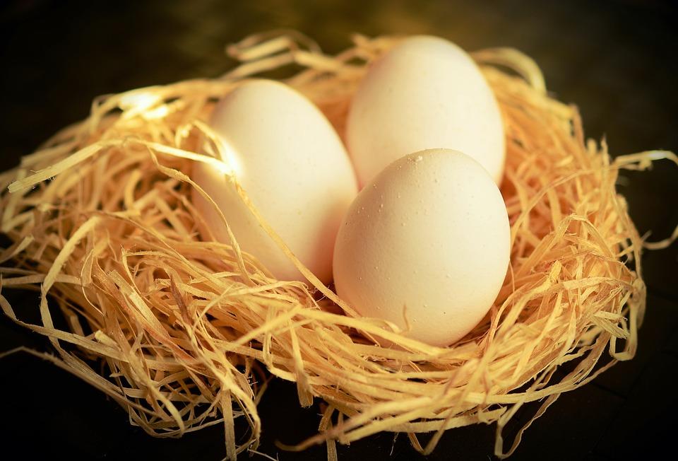 卵, 白い卵, 栄養, 鶏の卵, 食べる, 食品