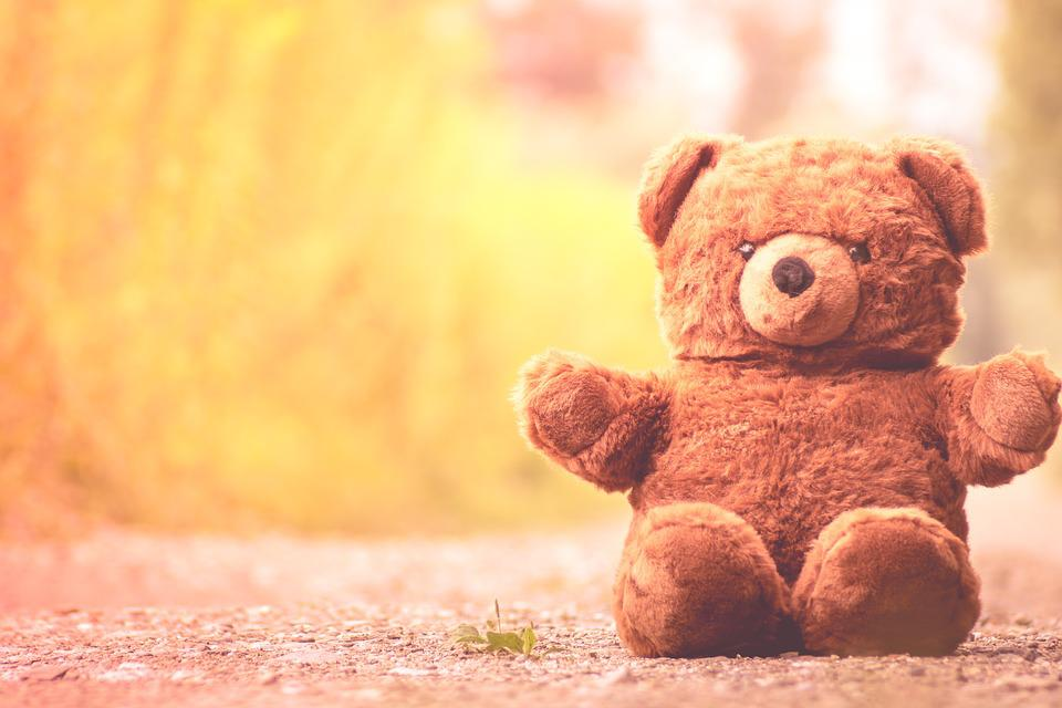 teddy bear furry cute free photo on pixabay
